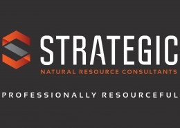 Strategic Logo - Natural Resource Consultants and Tagline - Reve
